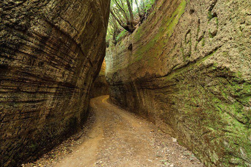 Trekking Toscana - Via Cava degli Etruschi